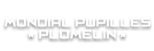 Mondial Pupilles Plomelin